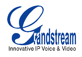 Grandstream Networks Logo and Partner in Video Security